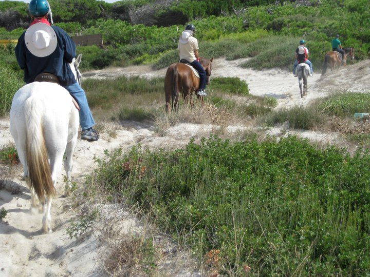 BNP PARIBAS LEASE GROUP – team building di attività equestri – HORSE COUNTRY RESORT – OR - Sardegna